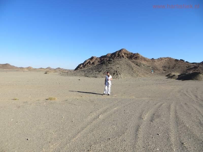 woestijnpauze (8)