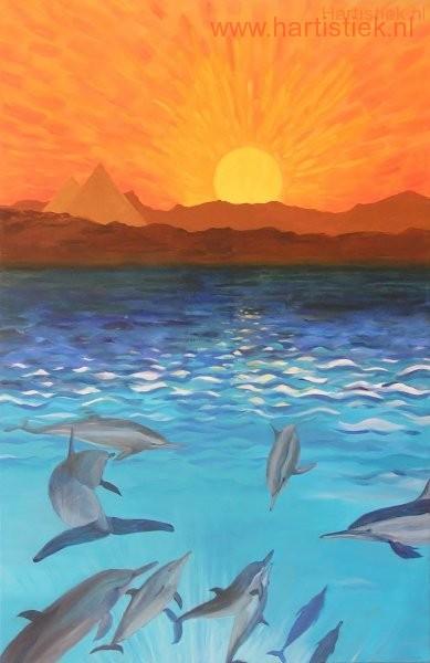 16 Impressie van mijn dolfijnenreis.
