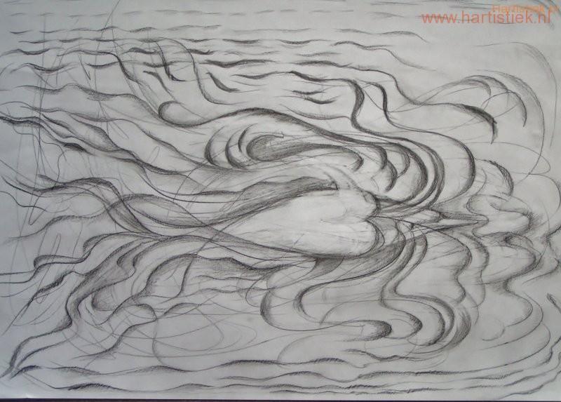 18 Dolfijnen, engelen van de zee!