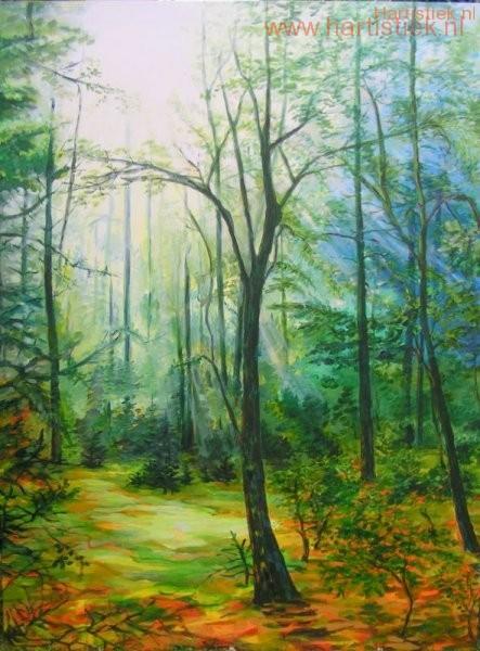 """1 """"Het licht in het bos"""""""