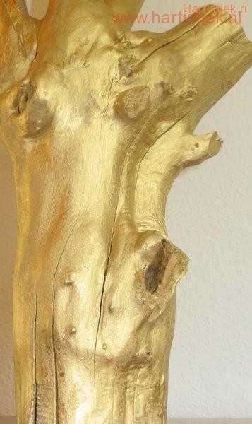 gouden torso uit boomstam