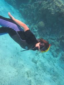 Duikend in de Rode Zee tussen het koraal